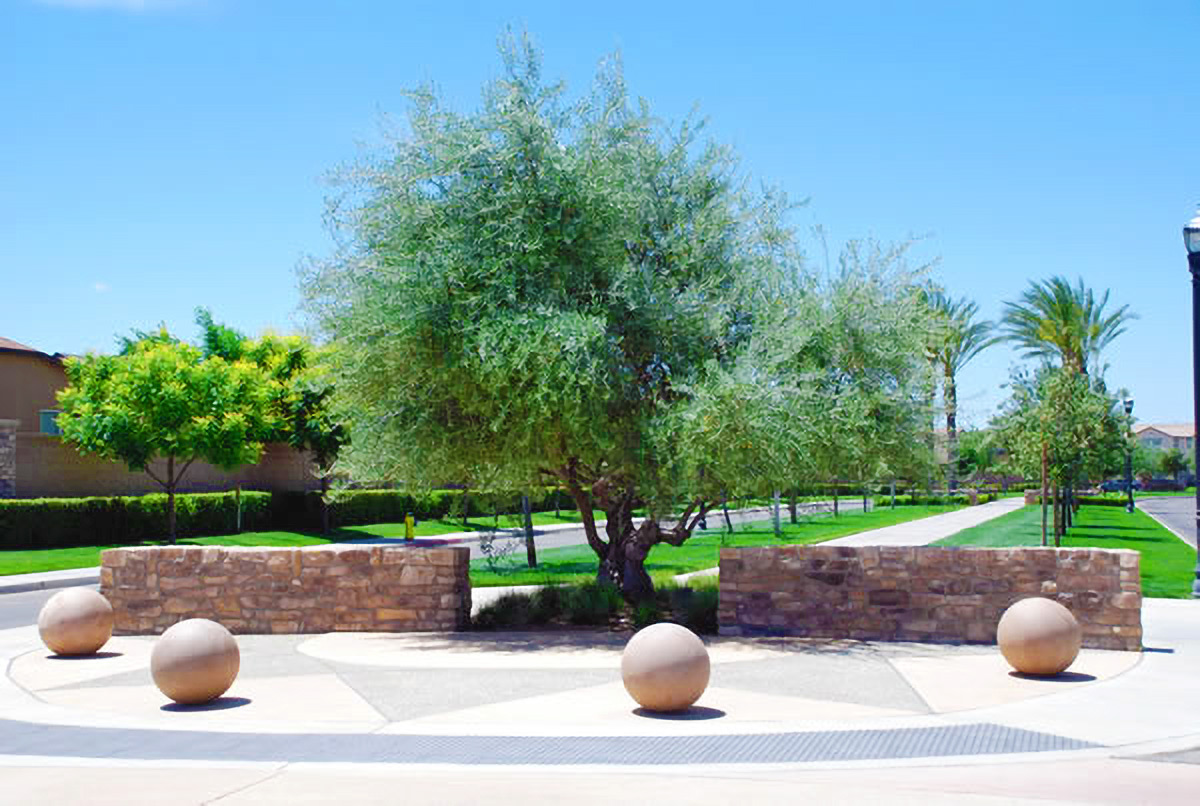 Central Cal Landscaping Service Recent Projects 2